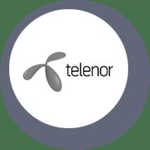 telenor-testimonial-logo